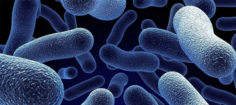 Как предотвратить мочевую инфекцию