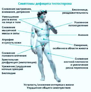 эндокринный фактор бесплодия