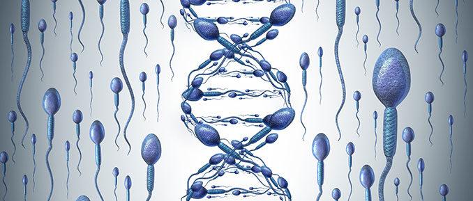 Анализ на фрагментацию ДНК в Москве